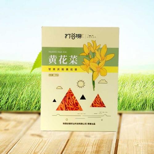 北京黄花菜