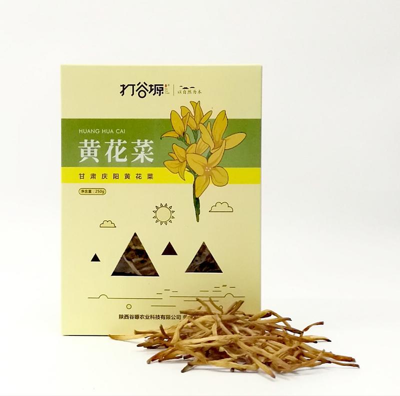黄花菜.jpg