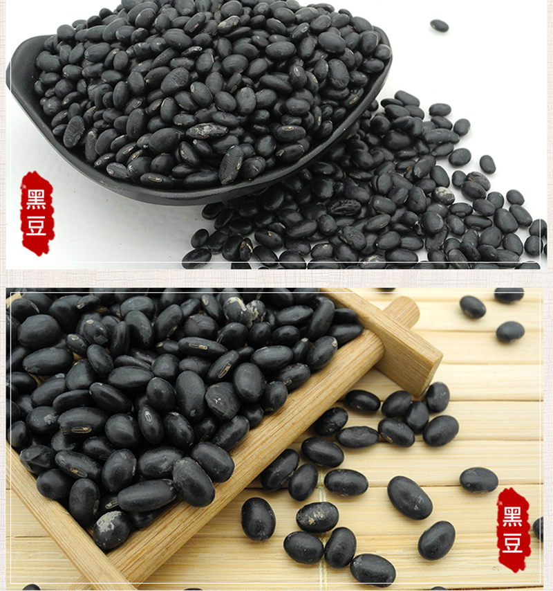 黑豆8.jpg